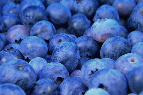 fresh produce jobs